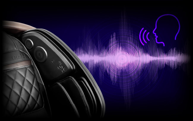 Osaki OS Pro Paragon Voice Recognition